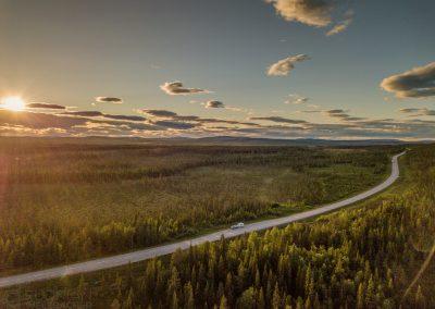 Luftaufnahme Straße Wald