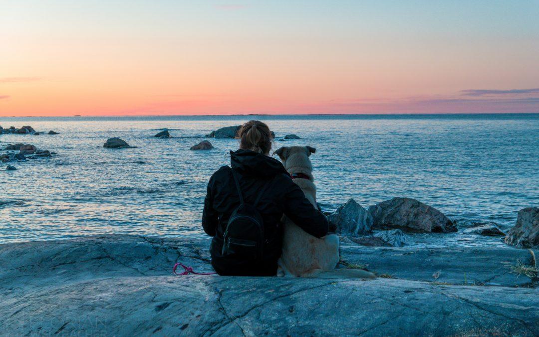 Mensch & Tier am Meer